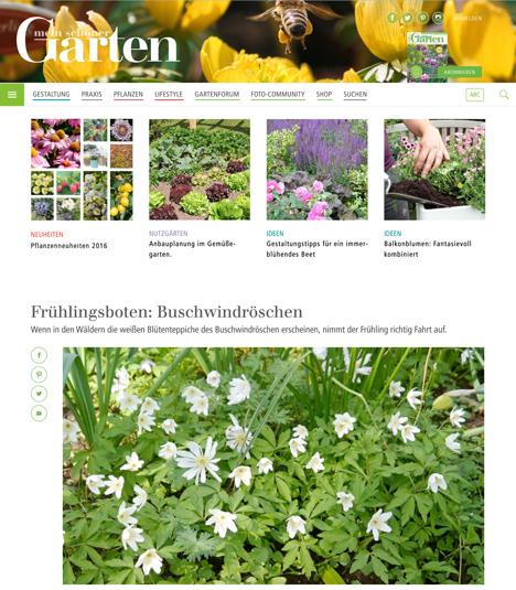 Mein schöner Garten\' investiert in digitales Wachstum